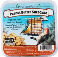 Peanut Butter Suet Cake